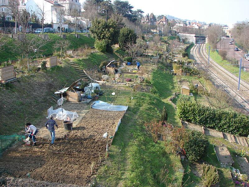 File 2013 jardins familiaux a saint cloud pres du tramway t2 depuis la passerelle de l avre jpg for Jardin porte de saint cloud
