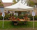 2015-10-17 11-07-41 marche-plantes-belfort.jpg