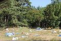 2015 Woodstock 076 śmieci.jpg