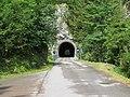 2017-07-23 (57) Steinbachtal at Dürrenstein (Ybbstaler Alpen).jpg