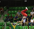 2019-06-27 1st FIG Artistic Gymnastics JWCH Men's All-around competition Subdivision 4 Horizontal bar (Martin Rulsch) 224.jpg