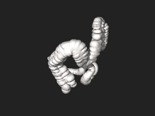Credit One Application >> File:3DPX-002736 Large intestine Nevit Dilmen.stl - Wikimedia Commons