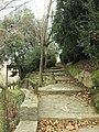 40 Parc de la Font Gran (Taradell).jpg