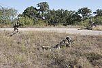 40th CAB Soldiers train to survive 151018-Z-JM073-014.jpg
