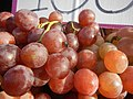 525Grapes in the Philippines 06.jpg