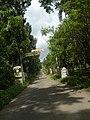 9759Poblacion III Del Carmen, Alaminos, Road 01.jpg