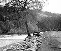 A Fehér-Tisza a település közelében. Fortepan 6073.jpg