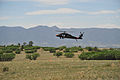 A U.S. Army UH-60 Black Hawk helicopter assigned to the Colorado Army National Guard provides firefighting assistance for the Black Forest Fire in El Paso County, Colo., June 12, 2013 130612-Z-WF656-002.jpg