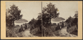 A View from Idlewild, by E. & H.T. Anthony (Firm).png