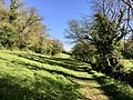 A country walk in Devon (34414211215).jpg