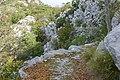 A mountain road, Primorska Planinarska Transverzala, Montenegro 146.jpg