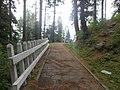 A pathway in Murree Hills.jpg