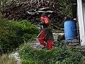 A view of Pahadi (Hilly) woman folk's hardlife style near Chamba 01.jpg