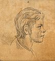 A youth whose physiognomy attests to unrefinability and obst Wellcome V0009131ER.jpg