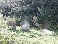 Abandoned Graves, Westley Old Church - geograph.org.uk - 922045.jpg