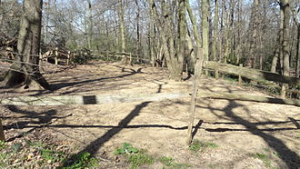 Abbey Wood SSSI - The Fossil Bed where members of the public are allowed to dig for fossils