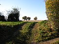 Access into a field - geograph.org.uk - 607866.jpg