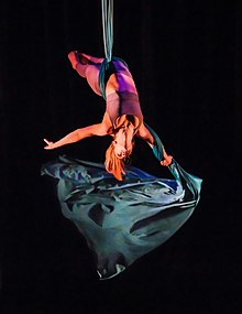 cheapest way to purchase ARTS PDF Aerialist Professional