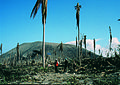 Aftermath of volcano eruption, Rabaul, PNG, 1994 (10665655046).jpg