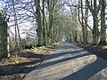 Afternoon Shadows - geograph.org.uk - 682852.jpg
