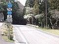 Aichi Pref r-335 Minamiosu.JPG