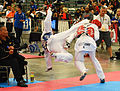 All-Army TKD competes at US Nationals 150708-Z-ZS194-023.jpg