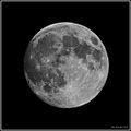 Allmost moon.jpg