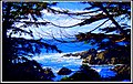 Along The Rugged West Coast Trail ^^ Ucluelet Vancouver Island BC 19 Janvier - panoramio.jpg