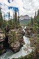 Along the Icefields Parkway - Athabasca Falls (32985168613).jpg