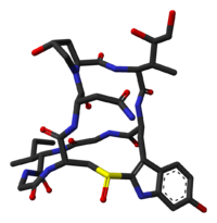 Alpha-amanitin-from-xtal-1k83-3D-sticks-skeletal.png