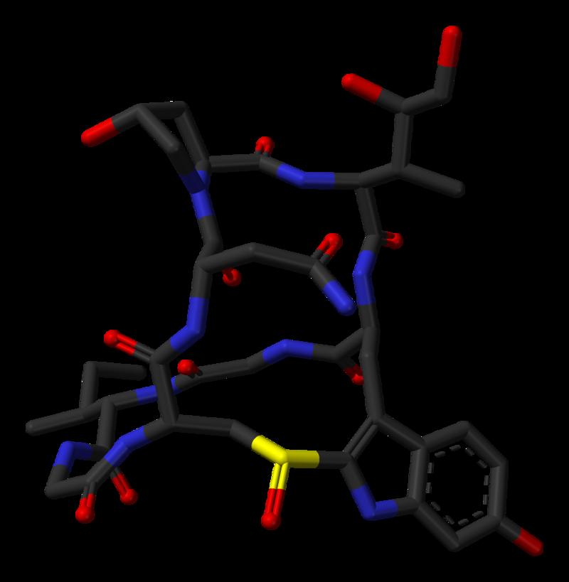 Alpha-amanitin-from-xtal-1k83-3D-sticks-skeletal.png