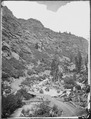 American (Fork) Canyon. Wahsatch Mountains, Utah - NARA - 519516.tif