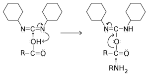 Amides formation with DCC.png