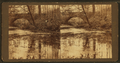 An icy mirror, from Robert N. Dennis collection of stereoscopic views 2.png