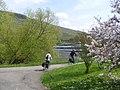 Andel- Moselufer - geo.hlipp.de - 37936.jpg
