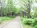 Ansan Park (beind the city hall) 007.JPG