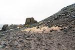 Antarctic Majesty (24847209261).jpg