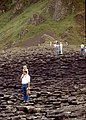 Antrim-Giant's Causeway-18-aufsteigendes Saeulenmeer-1989-gje.jpg
