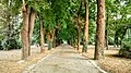 Asparuhovo city park .jpg