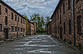 Auschwitz I, april 2014, photo 15.jpg