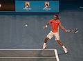 Australian Open 2010 Quarterfinals Nadal Vs Murray 23.jpg