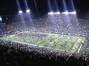 2010 Oregon Ducks football team - Fans storming the field following the 48–29 victory.