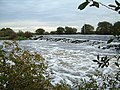 Averham weir - geograph.org.uk - 636265.jpg
