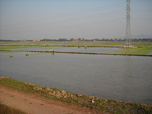 Việt Yên District - Image: Bắc Giang Viet Yen 2