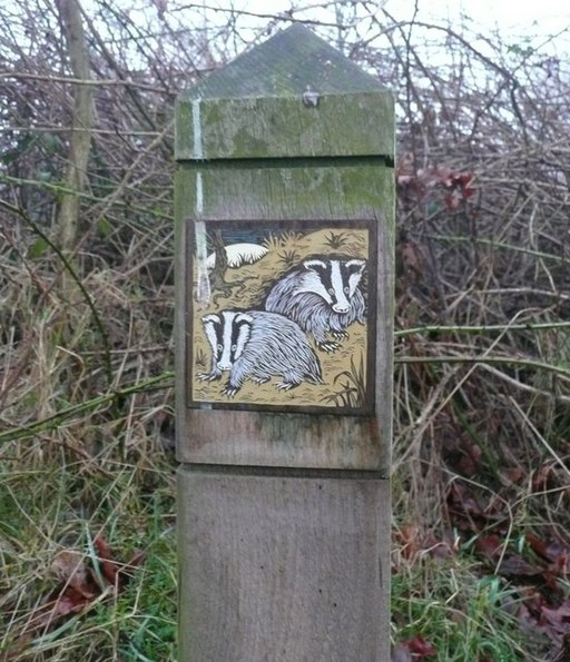 Badger plaque, Glassonby - geograph.org.uk - 1146848