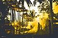 Bali ngaben group cremation ceremony 2013.jpg