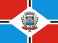 Bandeira Brotas.png