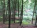Bansin beim Langen Berg Ruine Ferienlager 2012-07-04 211.JPG