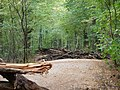 Barrier in the Hambach forest 13.jpg