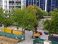 Baumaschine fährt auf alten Autoreifen über öffentliche Straße unter Baumkronen DSCF6184.jpg